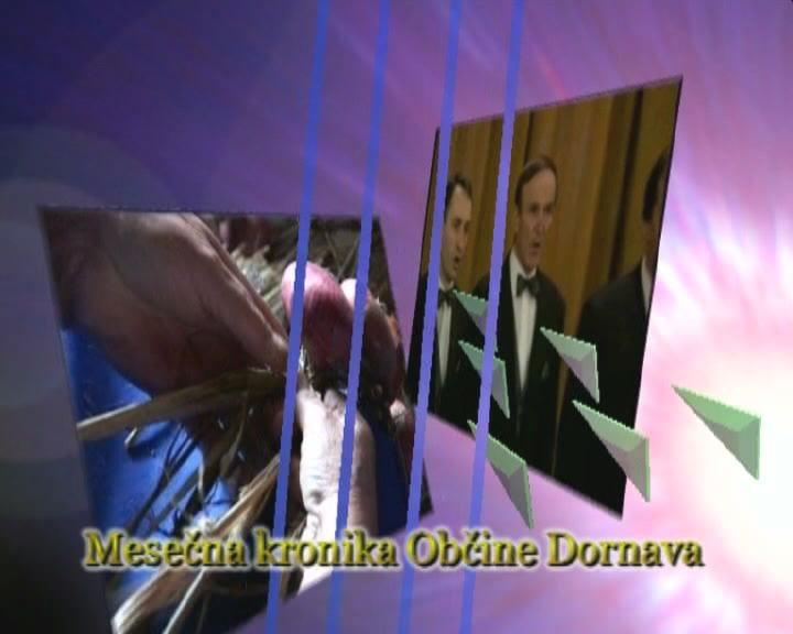 Kronika občine Dornava, januar 2017